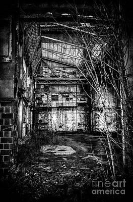 Abandoned Sugarmill Poster by Traven Milovich