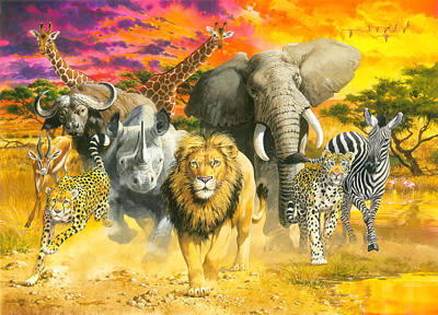 Africa's Finest Poster by John Francis