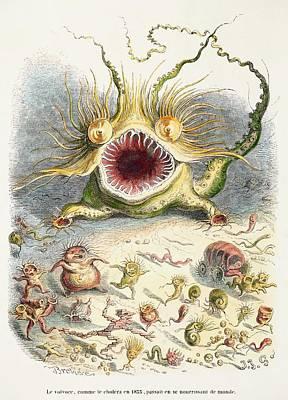 1833 Cholera Pandemic Grandville Cartoon Poster by Paul D Stewart