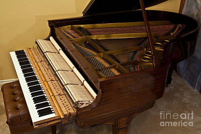 1909 Steinway Grand Piano Poster by Gregory G. Dimijian, M.D.