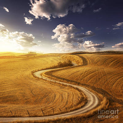 A Country Road In Field At Sunset Poster by Evgeny Kuklev