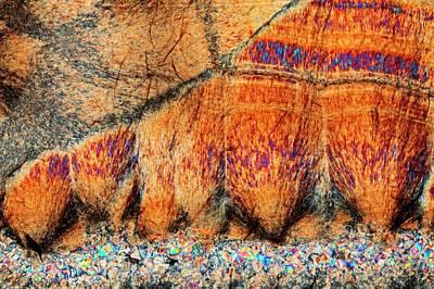 Agate. Polarised Light Micrograph Poster by Antonio Romero