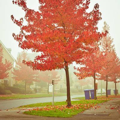 Autumn Scene Poster by Tom Gowanlock