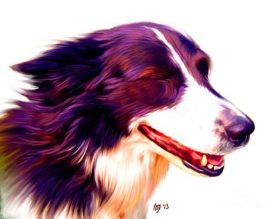 Border Collie Poster by Iain McDonald