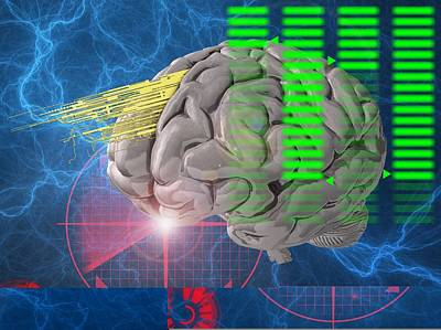 Brain Activity, Conceptual Artwork Poster by Science Photo Library
