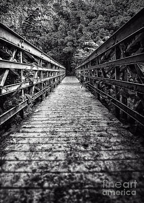Bridge Leading Into The Bamboo Jungle Poster by Edward Fielding
