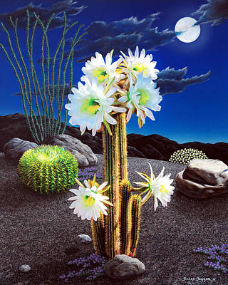 Cactus Blooms Poster by Snake Jagger