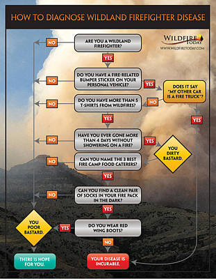 Poster featuring the photograph Diagnosing Wildland Firefighter Disease by Bill Gabbert