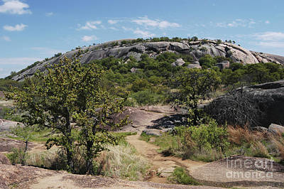 Enchanted Rock Poster by Gregory G. Dimijian