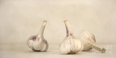 Fresh Garlic Poster by Priska Wettstein