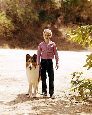Jon Provost In Lassie  Poster by Silver Screen