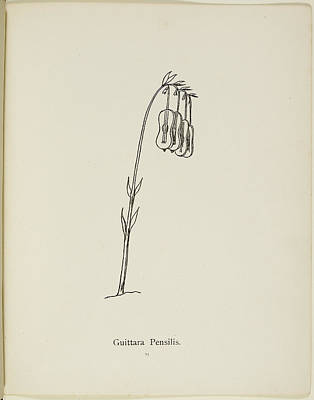 Nonsense Botany By Edward Lear Poster by British Library