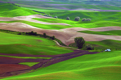 Palouse View From Steptoe Butte Poster by Michel Hersen