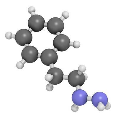 Phenelzine Antidepressant Molecule Poster by Molekuul