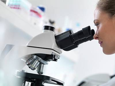 Scientist Using Microscope Poster by Tek Image