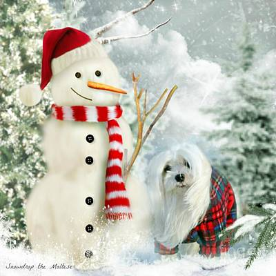 Snowdrop And The Snowman Poster by Morag Bates