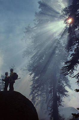 Usa, California, Forest Fire, Sequoia Poster by Gerry Reynolds
