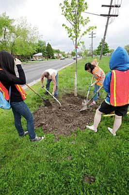 Volunteers Planting Trees Poster by Jim West