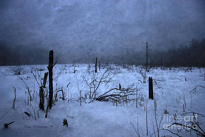 Winter Blues Poster by John Stephens