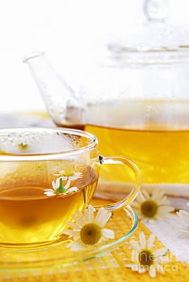 Chamomile Tea Poster by Elena Elisseeva