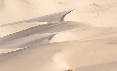 Eureka Dune Poster by Jean Noren