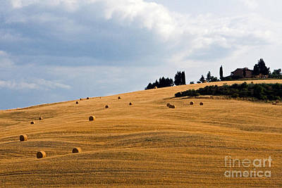 Farmhouse In Tuscany Italy Poster by Tim Holt