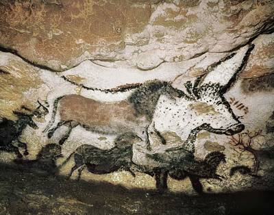 France. Montignac. The Cave Of Lascaux Poster by Everett