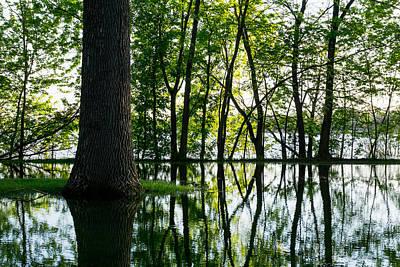 Lake Nokomis In A Wet Spring Poster by Jim Hughes