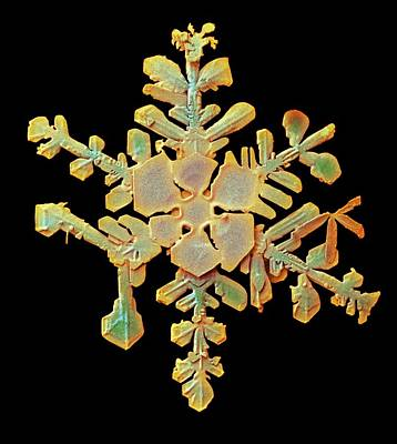 Snowflake Poster by Ars/us Dept Of Agriculture