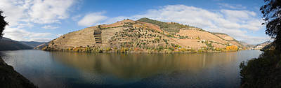 Vineyards At The Riverside, Cima Corgo Poster by Panoramic Images