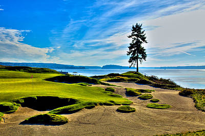 #15 At Chambers Bay Golf Course - Location Of The 2015 U.s. Open Tournament Poster by David Patterson