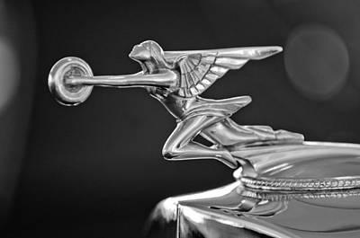 1934 Packard 8 1101 Sedan Hood Ornament Poster by Jill Reger