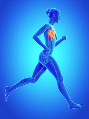 Heart Of A Runner Poster by Sebastian Kaulitzki