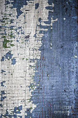 Old Painted Wood Abstract No.4 Poster by Elena Elisseeva
