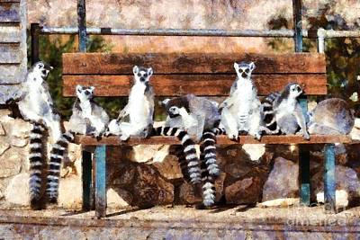 Ring Tailed Lemurs Poster by George Atsametakis