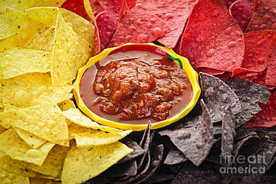 Tortilla Chips And Salsa Poster by Elena Elisseeva