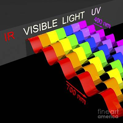 Visible Light Spectrum, Artwork Poster by Russell Kightley