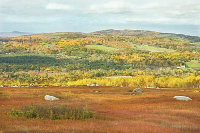 Autumn Colors In Maine Blueberry Field And Forest Poster by Keith Webber Jr