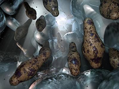 Clostridium Bacteria Poster by Hipersynteza
