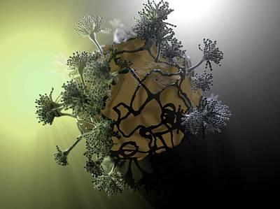 Aspergillus Fungus Poster by Hipersynteza