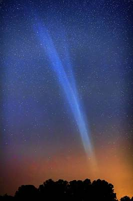 Comet Lovejoy Poster by Luis Argerich