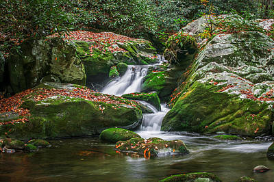 Waterfall Great Smoky Mountains  Poster by Rich Franco