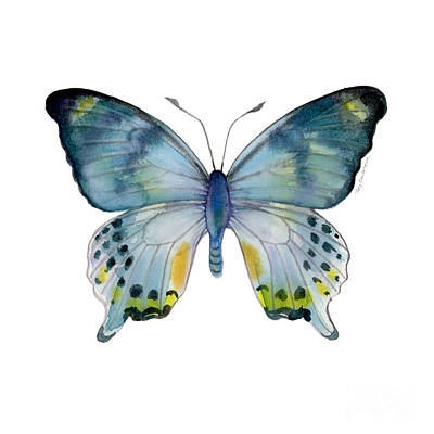 68 Laglaizei Butterfly Poster by Amy Kirkpatrick
