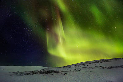 Aurora Borealis Or Northern Lights Poster by Panoramic Images