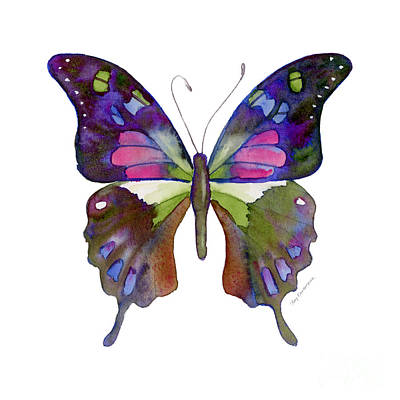 98 Graphium Weiskei Butterfly Poster by Amy Kirkpatrick