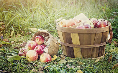 A Bushel And A Peck Poster by Heather Applegate