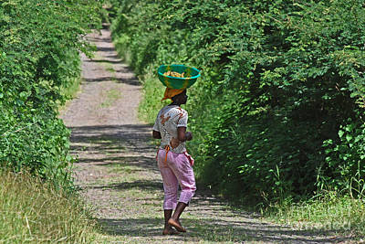 A Cape Verdean Girl Walking With A Basket On Her Head 0742 Poster by Colin Munro