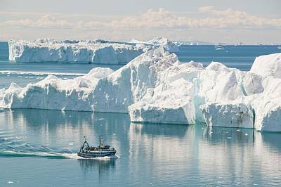 A Fishing Boat Sails Through Icebergs Poster by Ashley Cooper