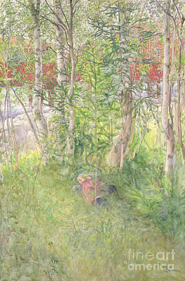 A Nap Outdoors Poster by Carl Larsson