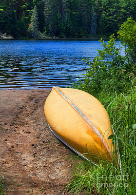 A Perfect Day For A Paddle In The Wilderness Poster by Barbara McMahon